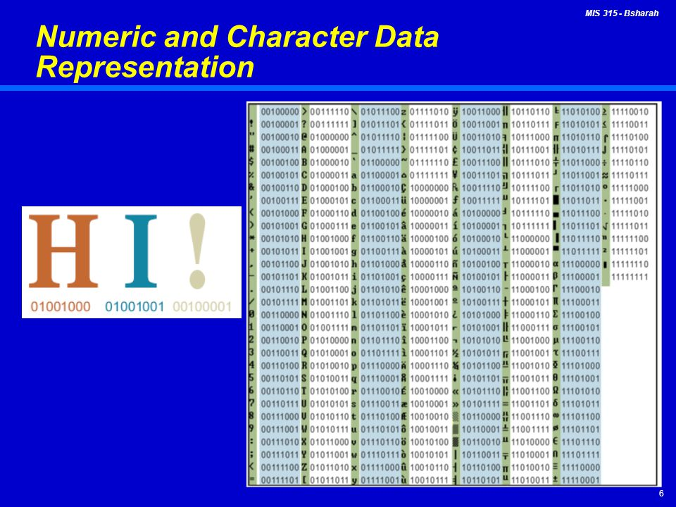 Numeric and Character Data Representation