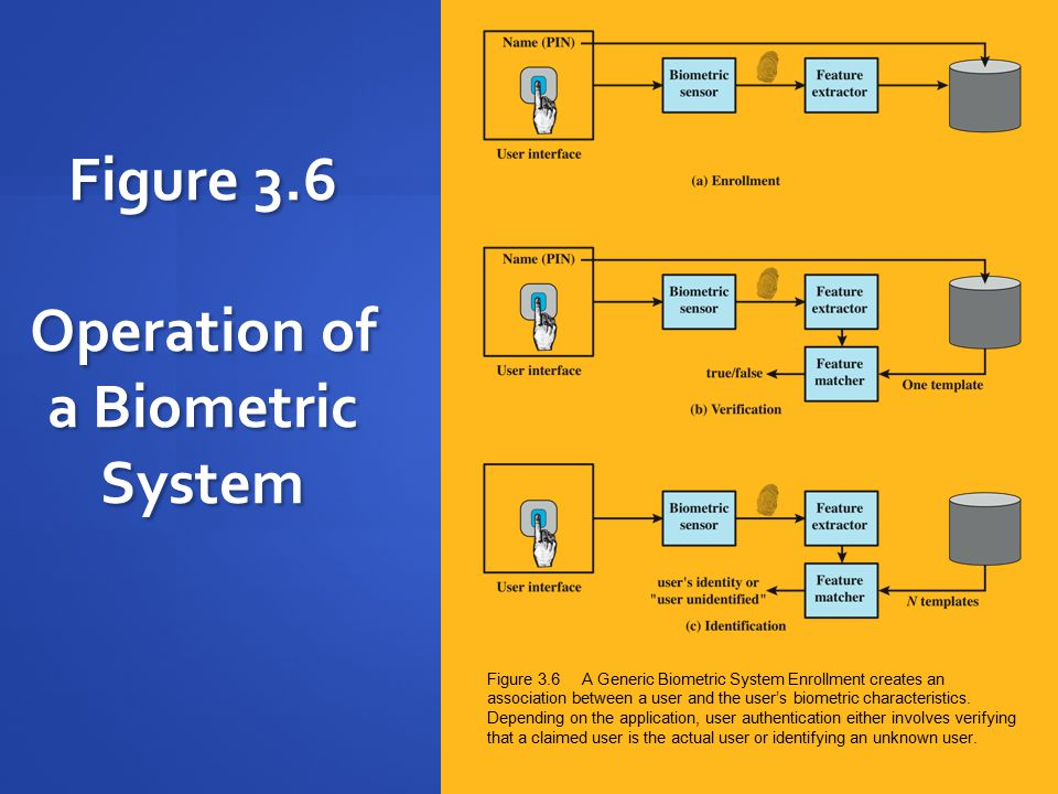 Figure 3.6 Operation of a Biometric System