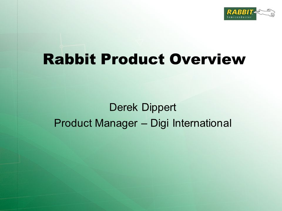 Rabbit Product Overview