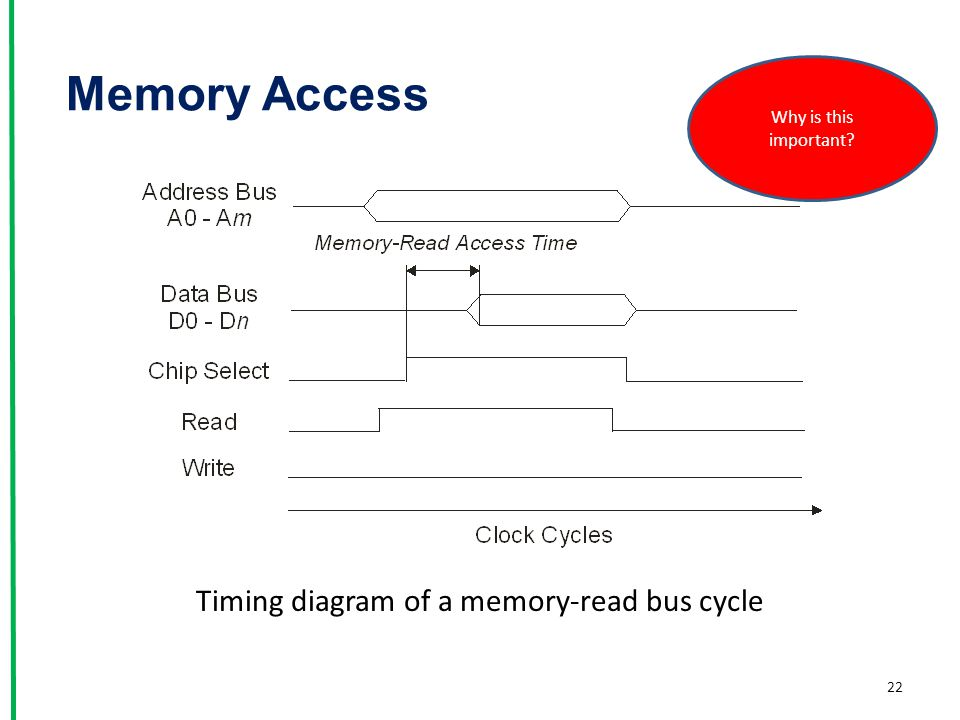 Timing diagram of a memory-read bus cycle