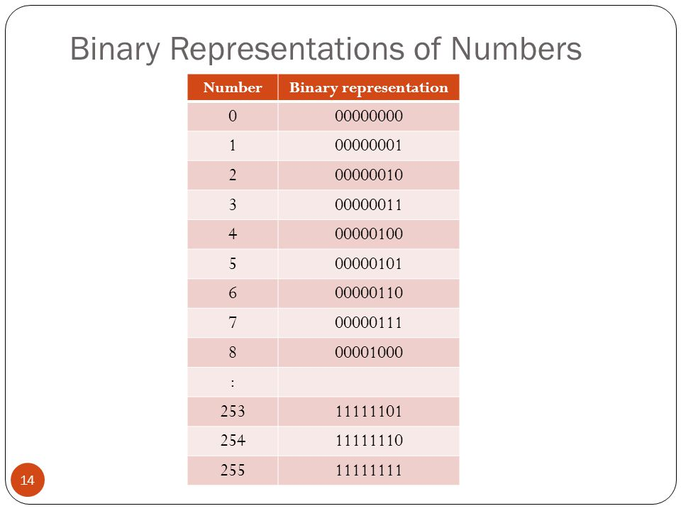 Binary Representations of Numbers