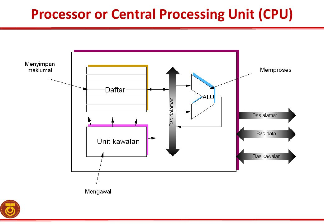Processor or Central Processing Unit (CPU)