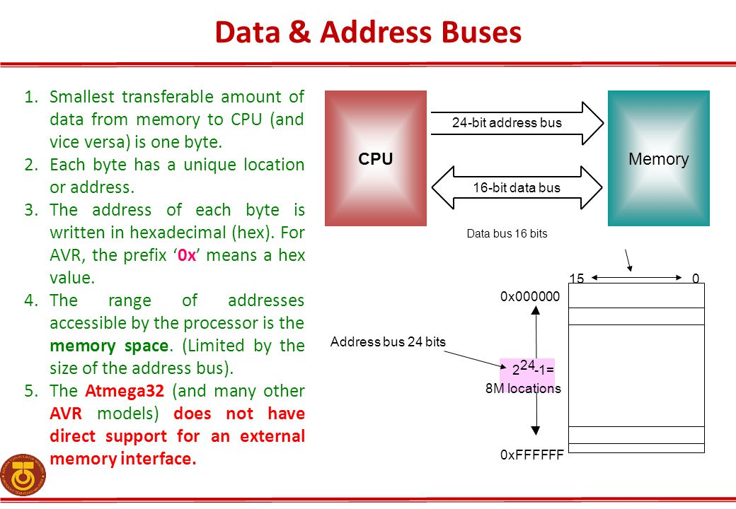 Data & Address Buses Smallest transferable amount of data from memory to CPU (and vice versa) is one byte.