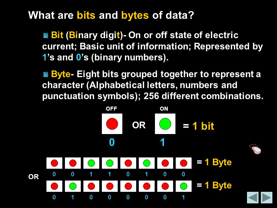 What are bits and bytes of data