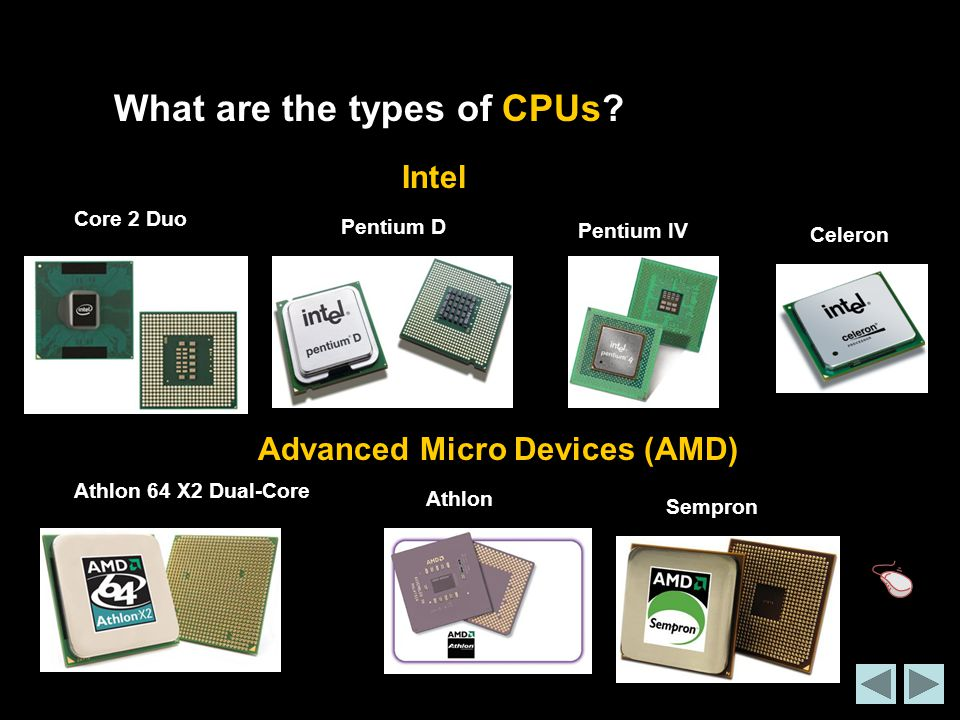 What are the types of CPUs