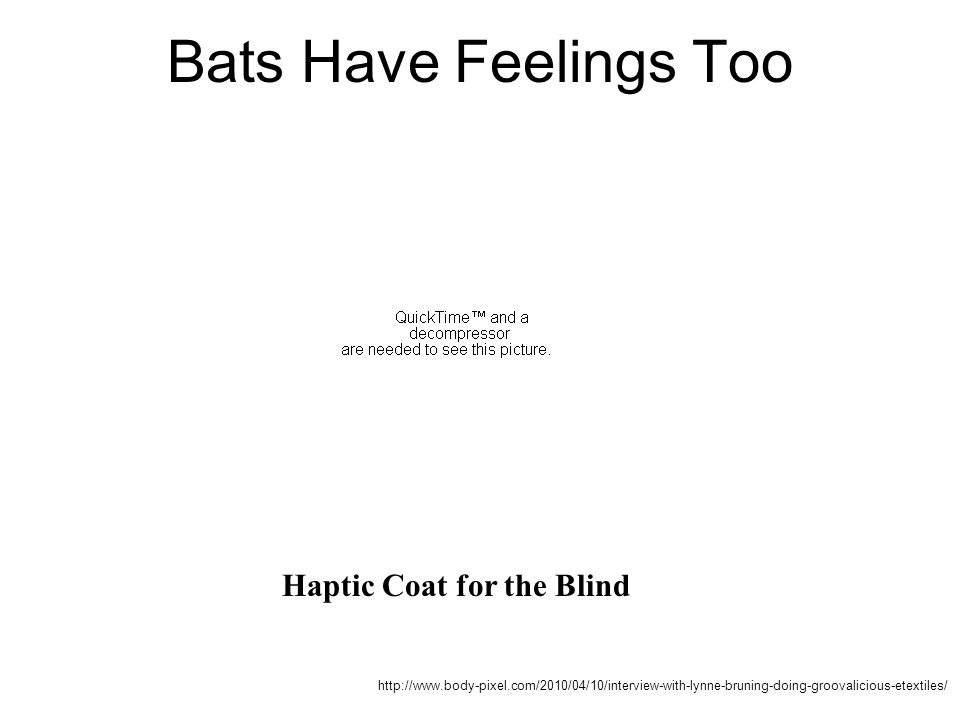 Bats Have Feelings Too Haptic Coat for the Blind