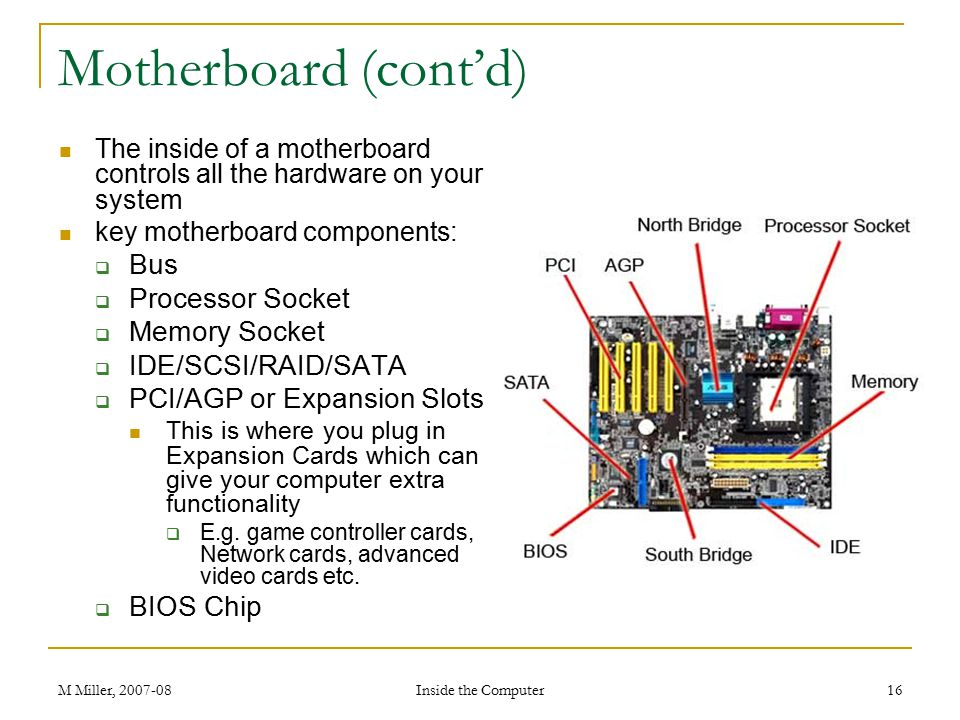 Motherboard (cont'd) Bus Processor Socket Memory Socket