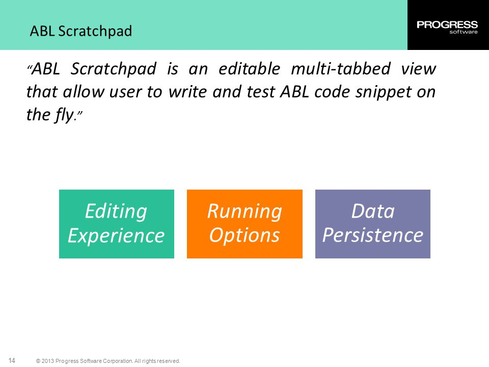 Editing Experience Running Options Data Persistence ABL Scratchpad