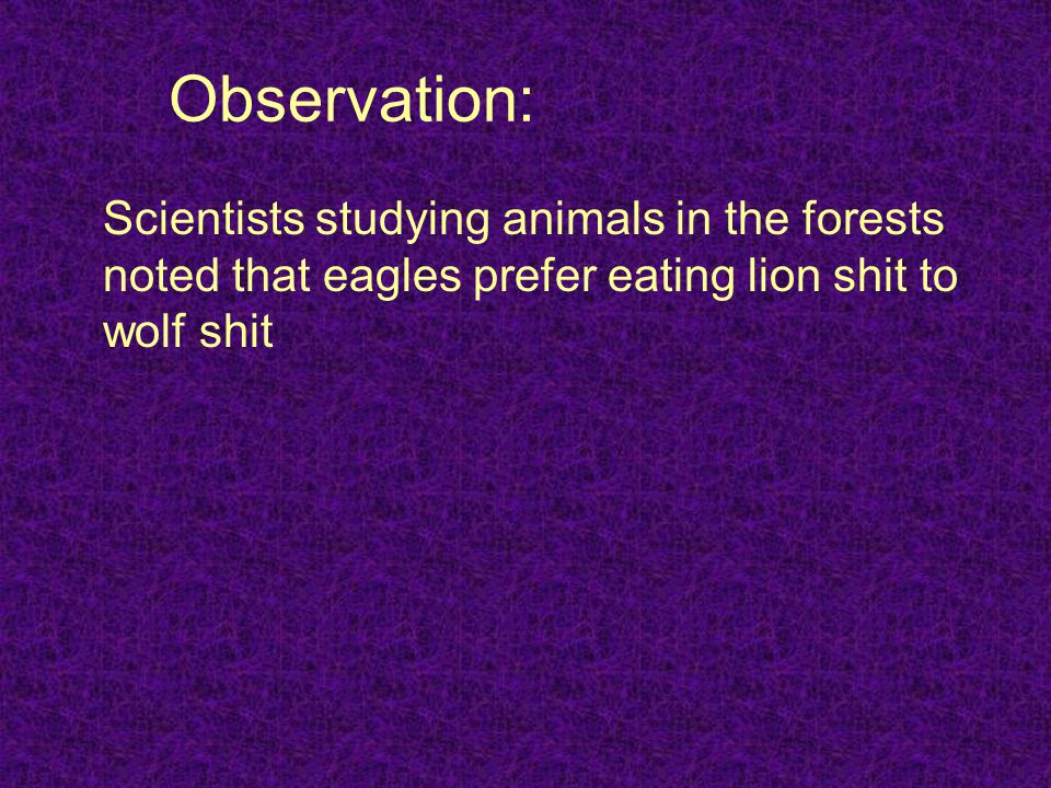 Observation: Scientists studying animals in the forests noted that eagles prefer eating lion shit to wolf shit.