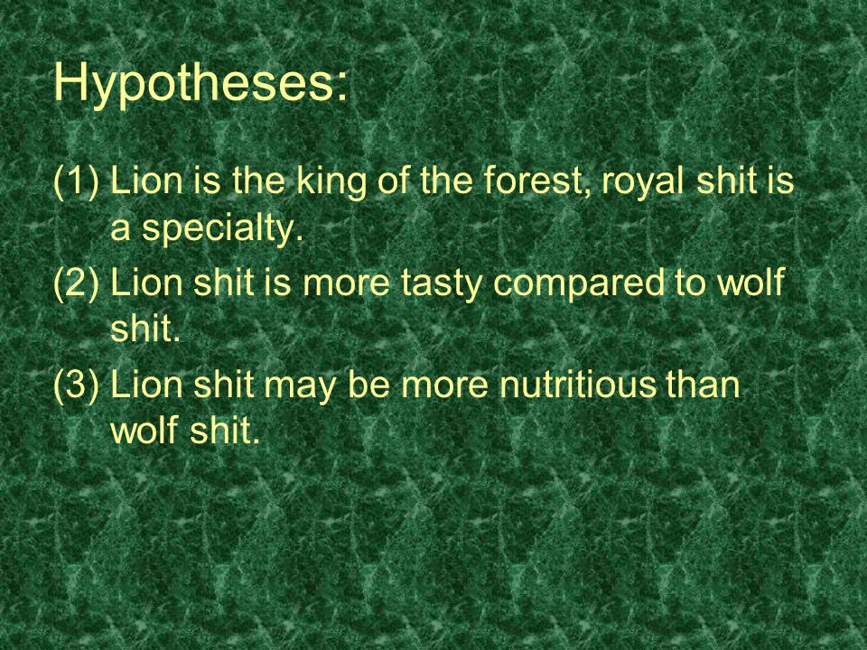 Hypotheses: Lion is the king of the forest, royal shit is a specialty.