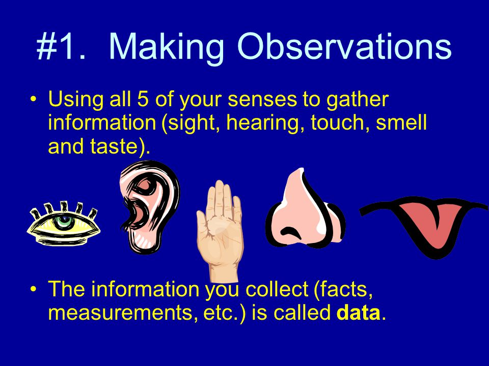 #1. Making Observations Using all 5 of your senses to gather information (sight, hearing, touch, smell and taste).