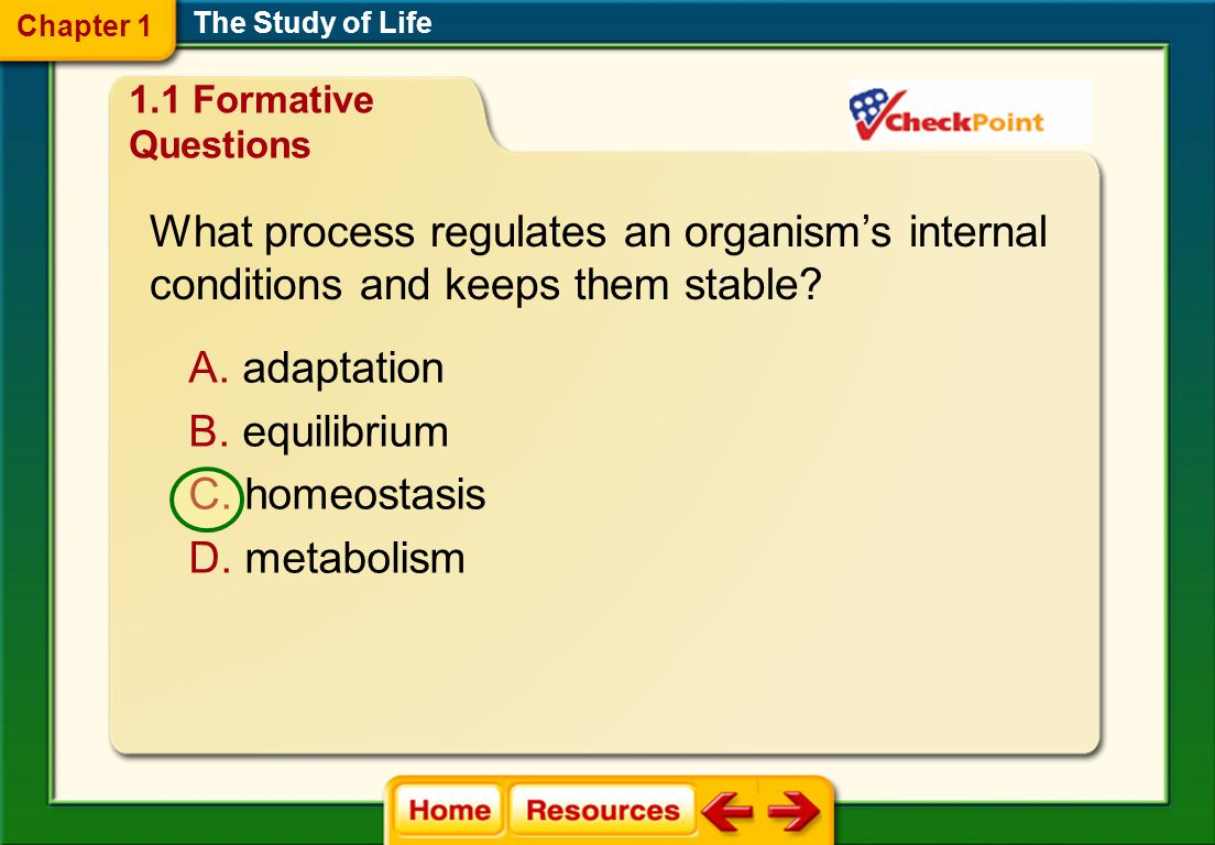 What process regulates an organism's internal
