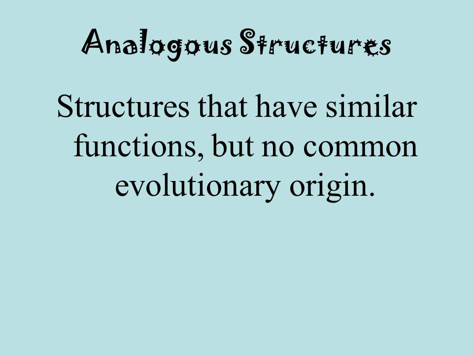 Analogous Structures Structures that have similar functions, but no common evolutionary origin.