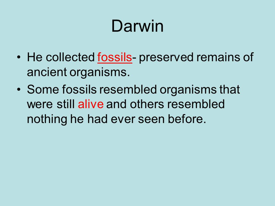 Darwin He collected fossils- preserved remains of ancient organisms.