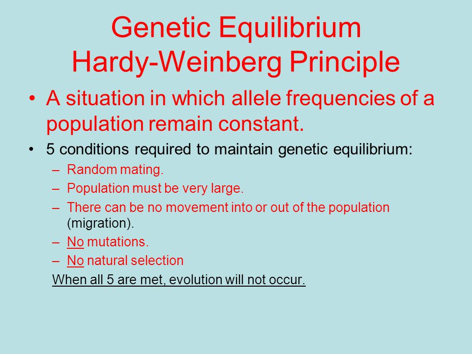 Genetic Equilibrium Hardy-Weinberg Principle