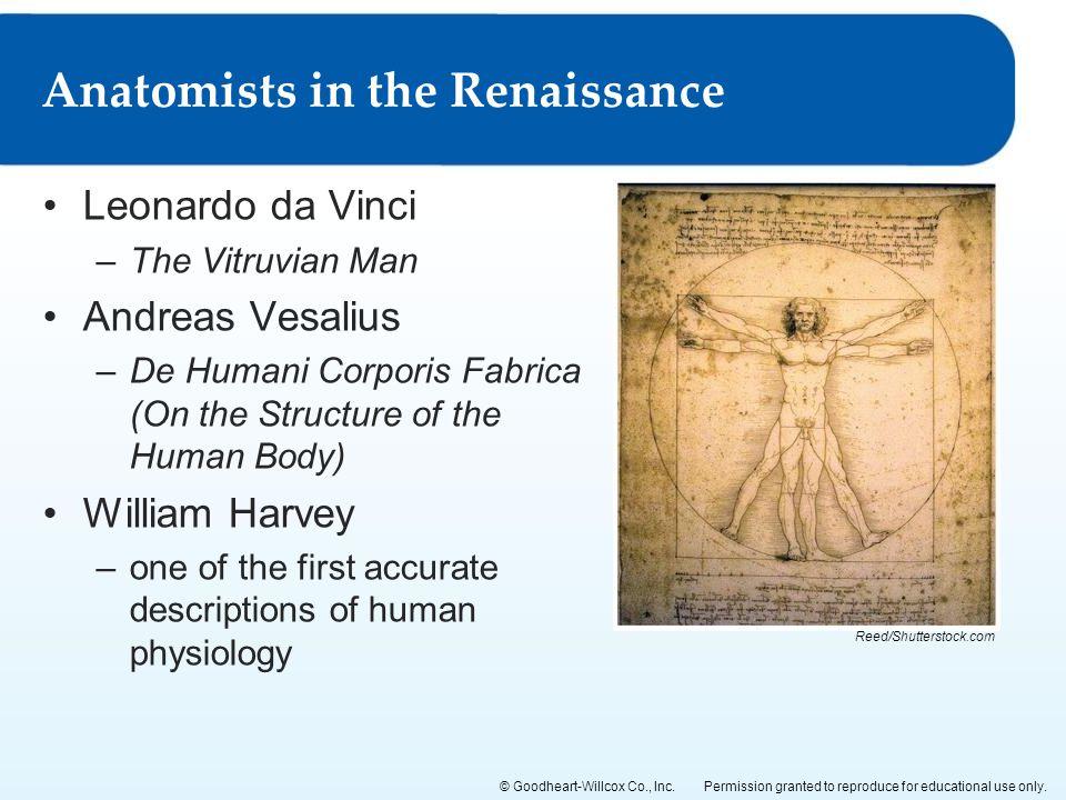 Anatomists in the Renaissance