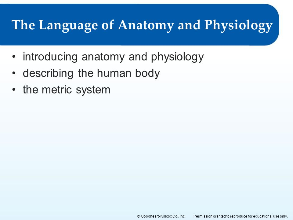 The Language of Anatomy and Physiology