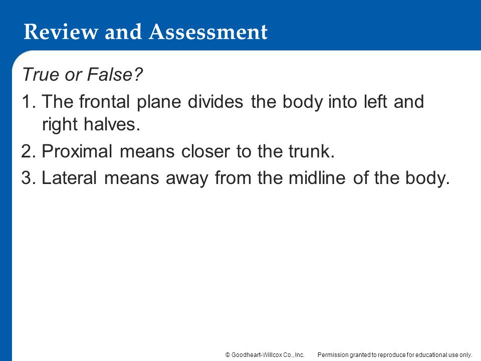 Review and Assessment