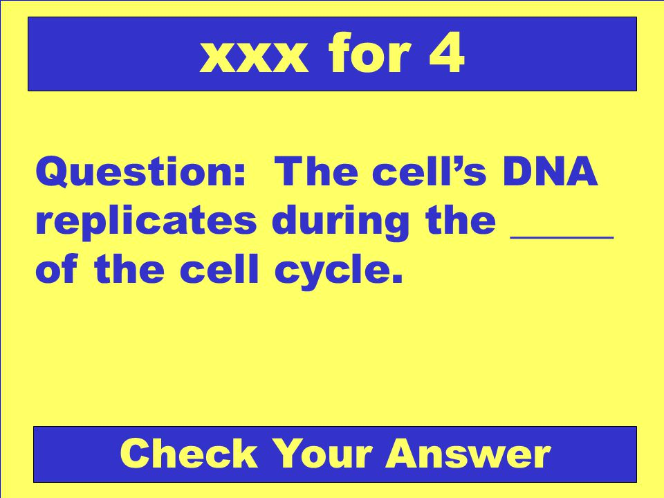 xxx for 4 Question: The cell's DNA replicates during the _____ of the cell cycle.