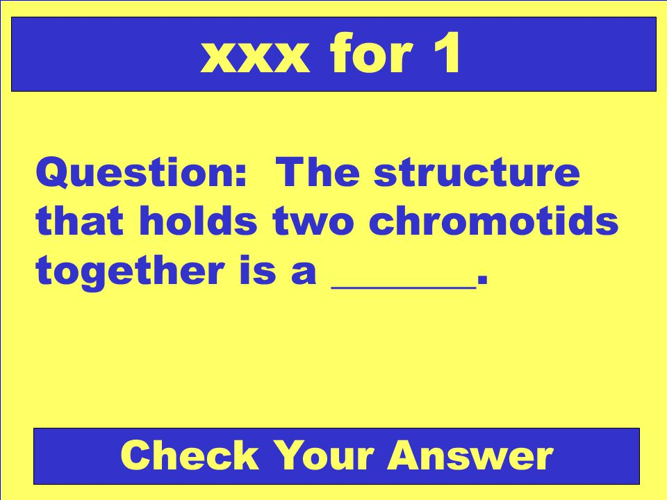 xxx for 1 Question: The structure that holds two chromotids together is a _______.