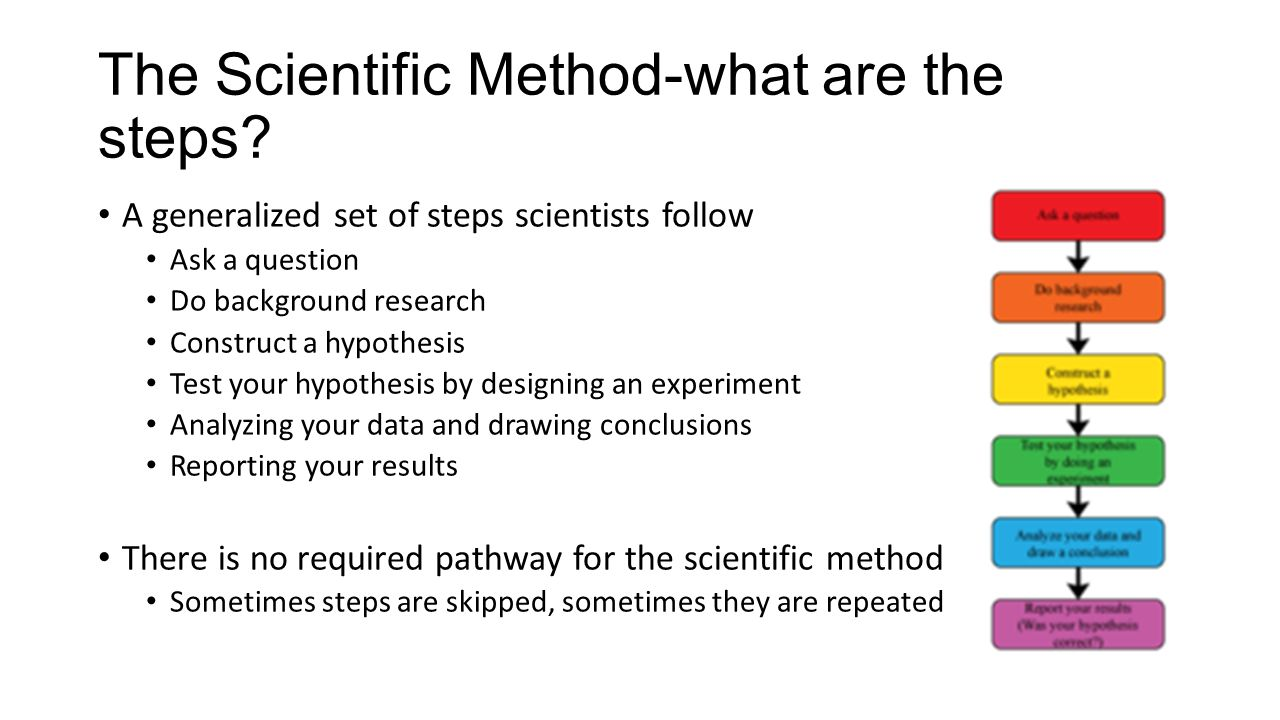 The Scientific Method-what are the steps