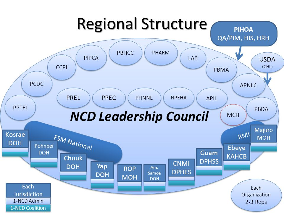NCD Leadership Council