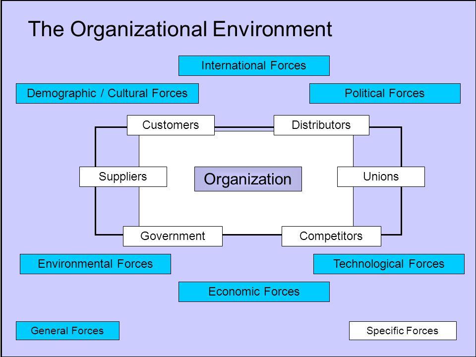 Demographic / Cultural Forces