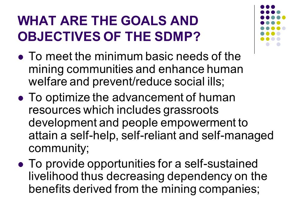 WHAT ARE THE GOALS AND OBJECTIVES OF THE SDMP