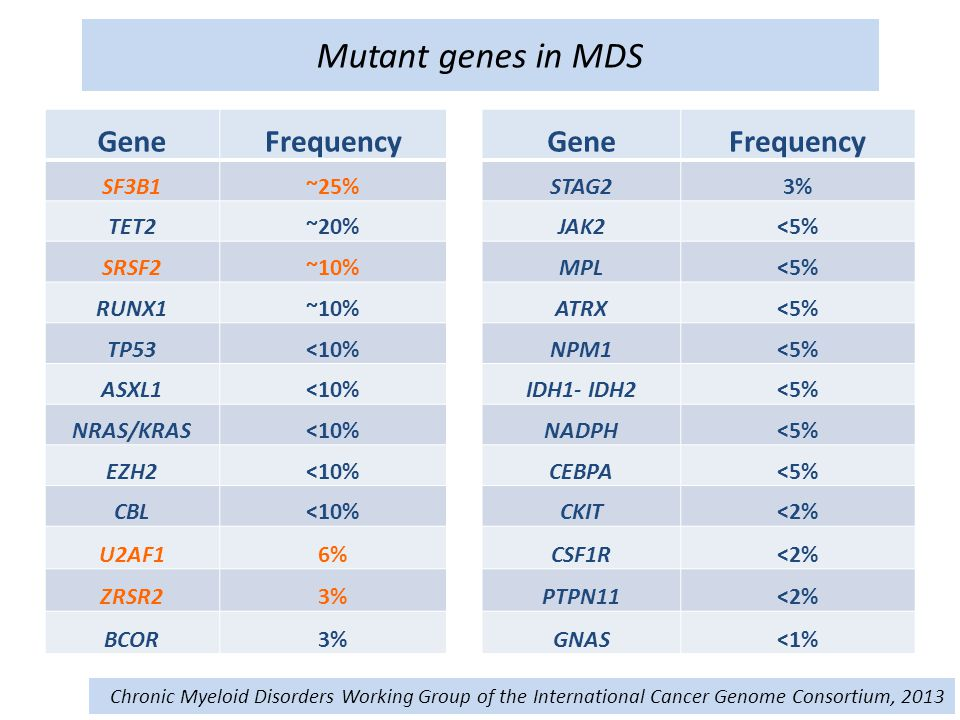Mutant genes in MDS Gene Frequency SF3B1 ~25% STAG2 3% TET2 ~20% JAK2