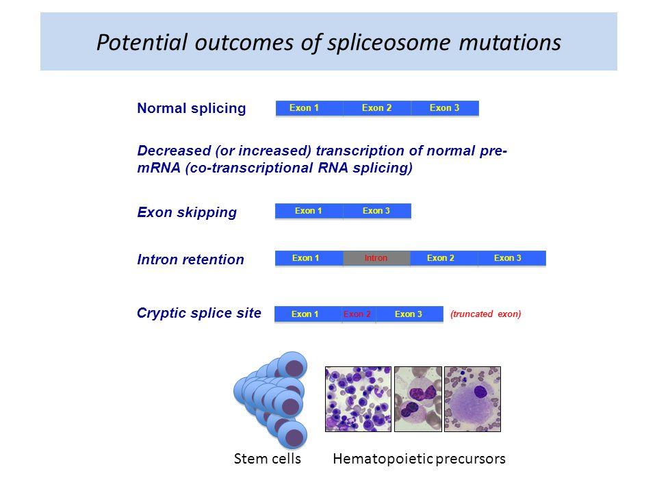 Potential outcomes of spliceosome mutations