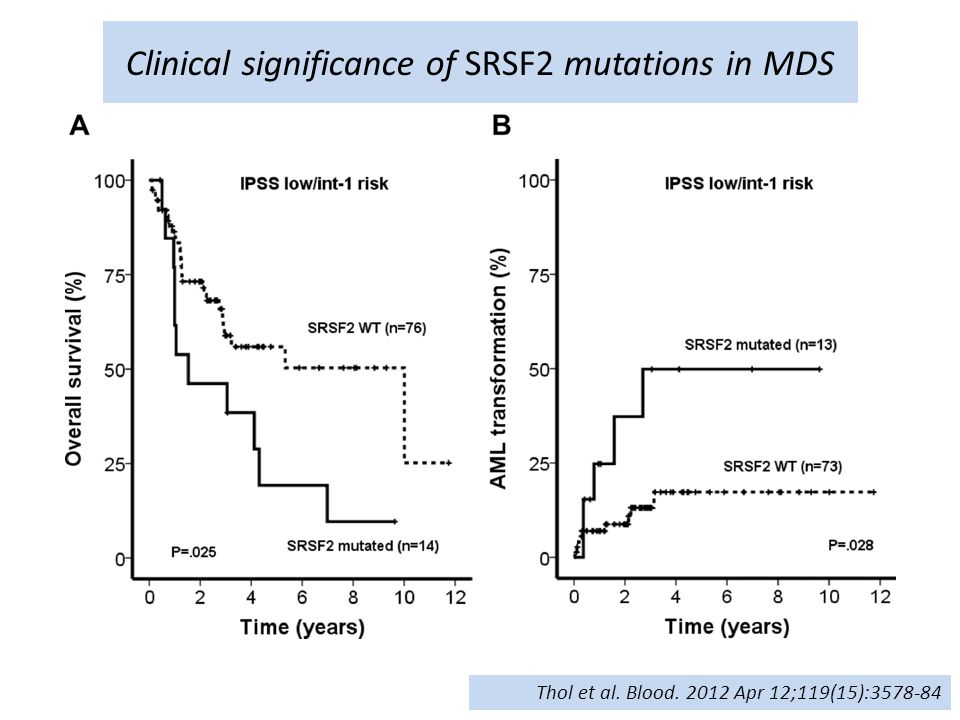 Clinical significance of SRSF2 mutations in MDS