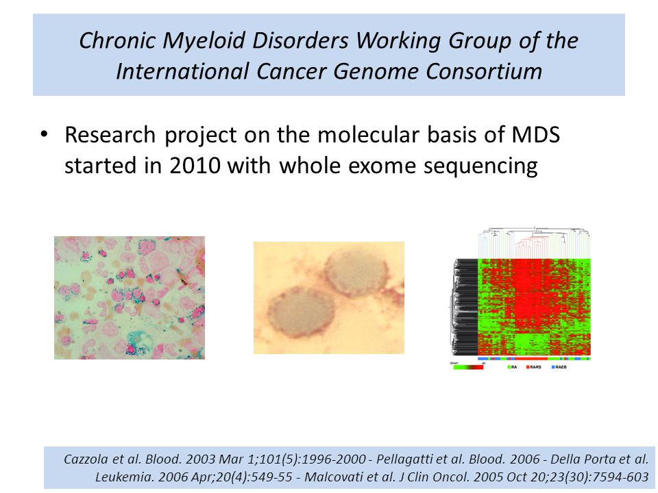 Chronic Myeloid Disorders Working Group of the International Cancer Genome Consortium