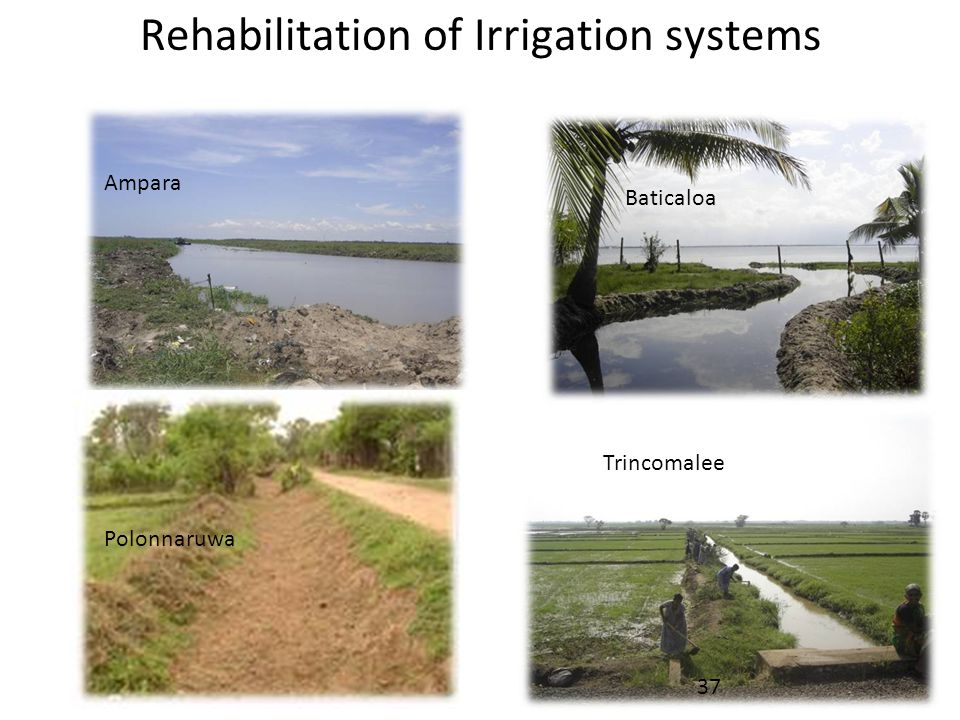 Rehabilitation of Irrigation systems