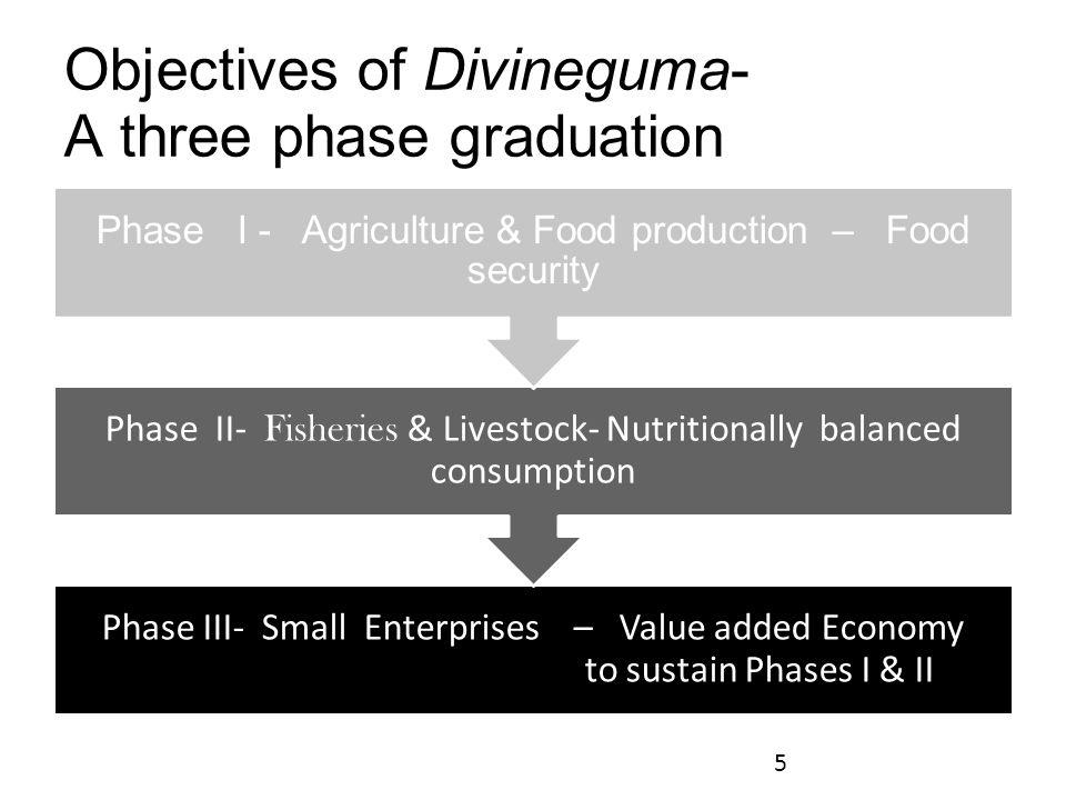 Objectives of Divineguma- A three phase graduation