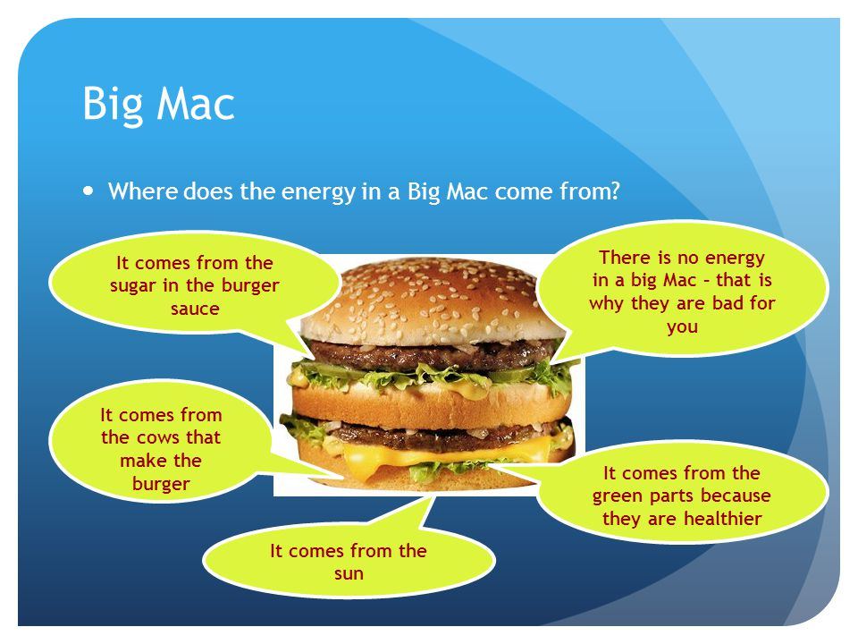 Big Mac Where does the energy in a Big Mac come from