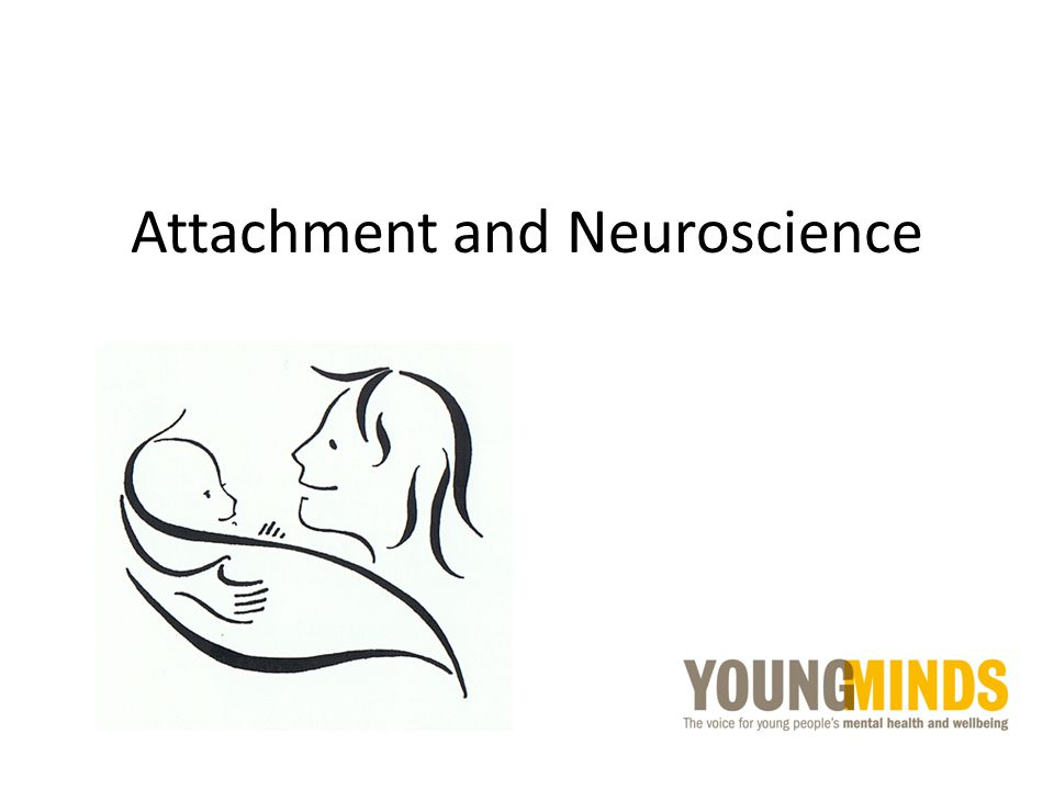 Attachment and Neuroscience
