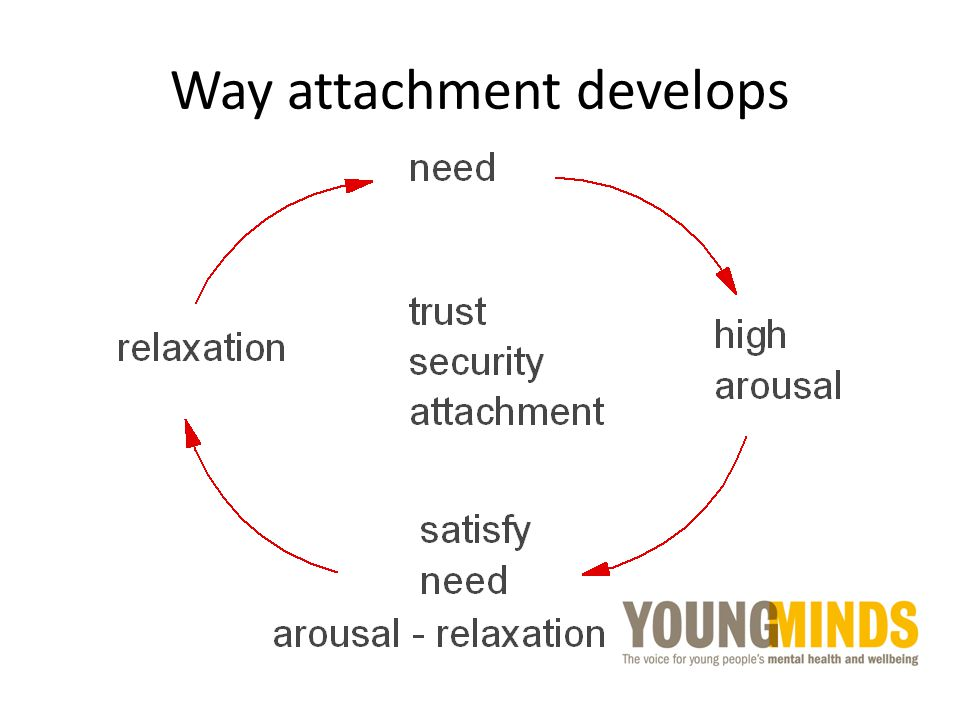Way attachment develops