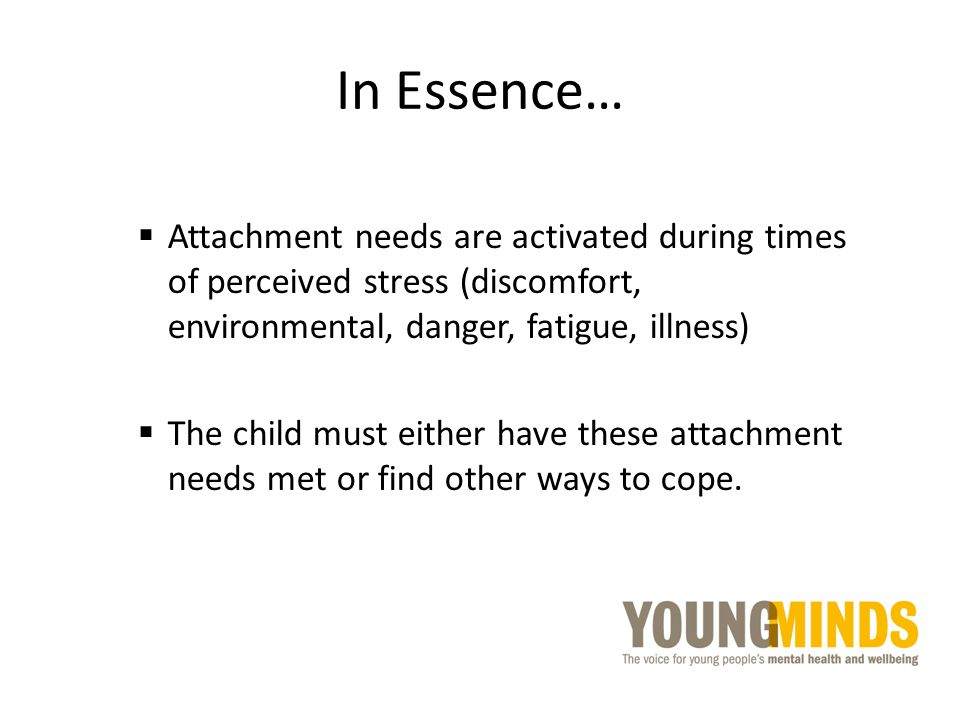 In Essence… Attachment needs are activated during times of perceived stress (discomfort, environmental, danger, fatigue, illness)