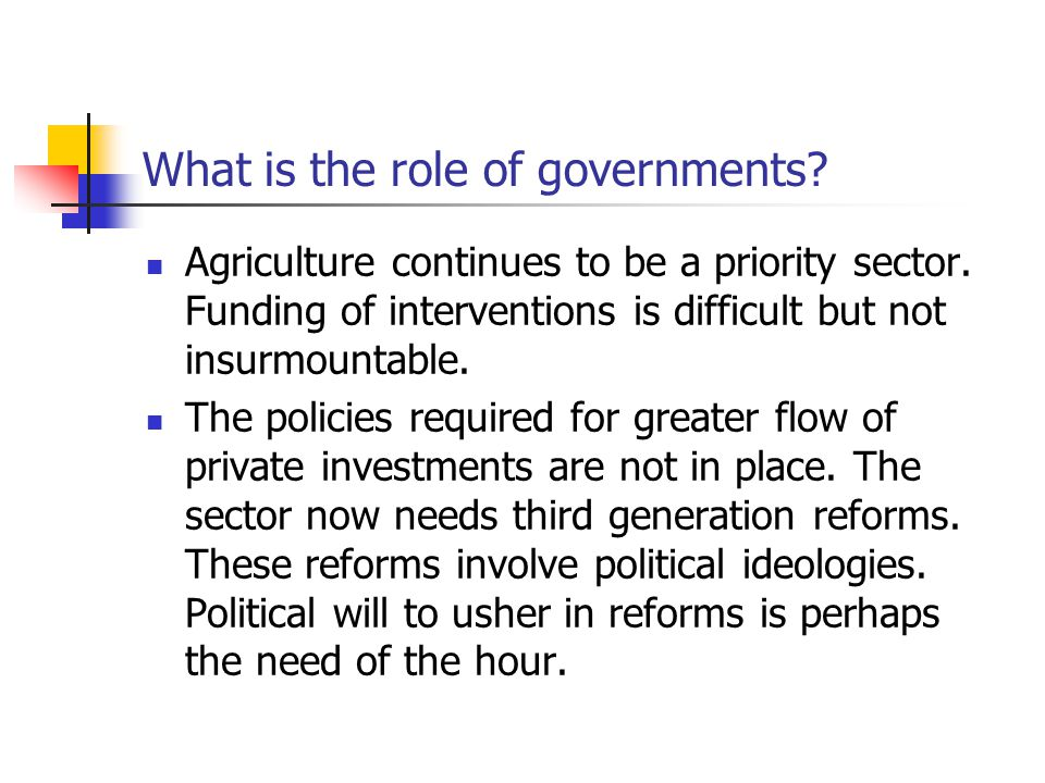What is the role of governments