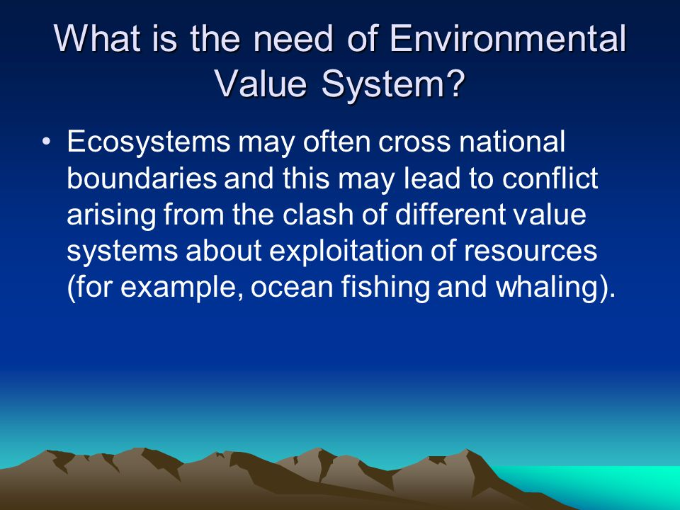 What is the need of Environmental Value System