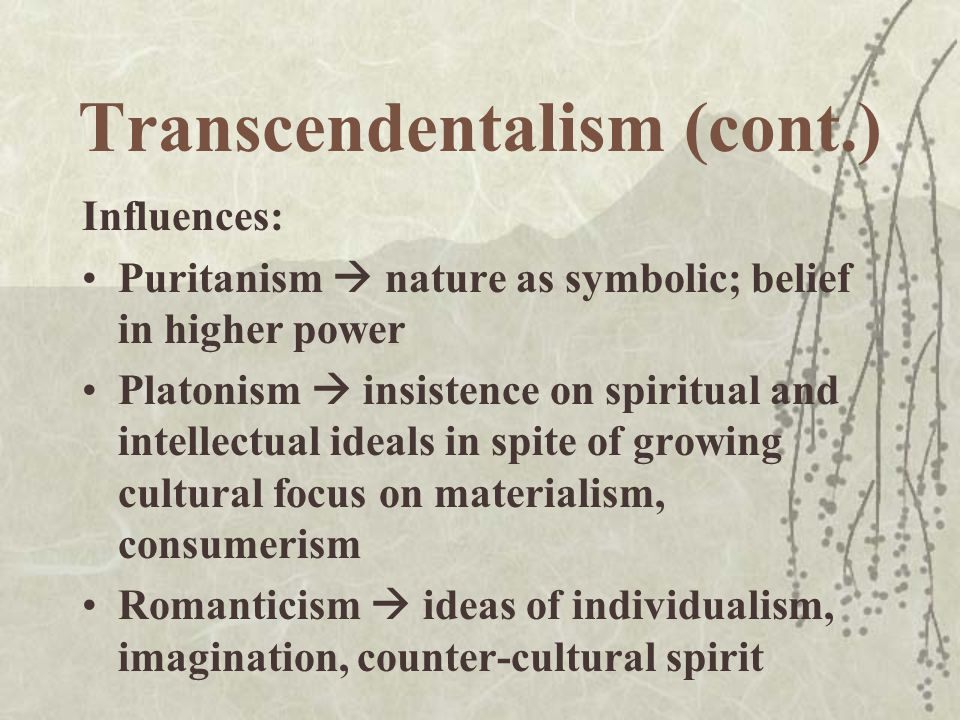romanticism not to mention transcendentalism essayscorer