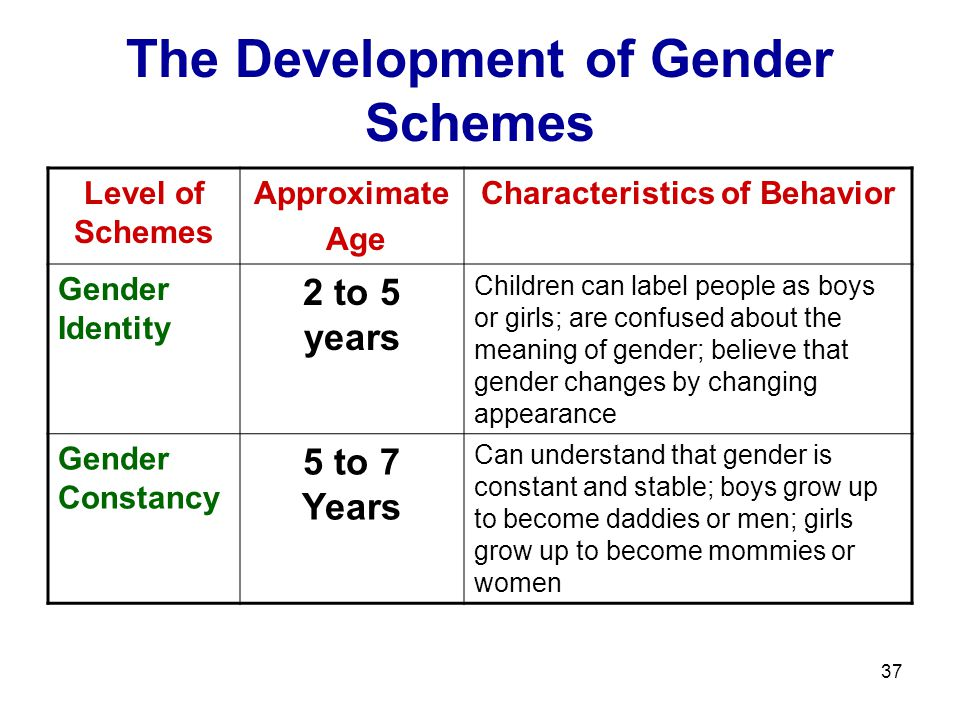 The Development of Gender Schemes