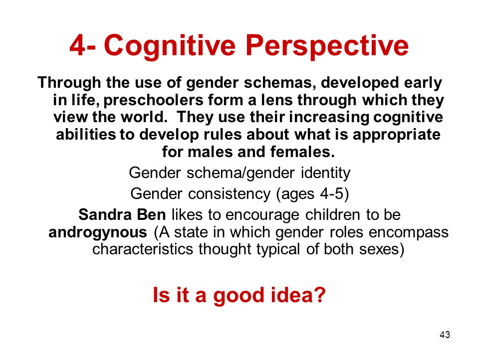 4- Cognitive Perspective