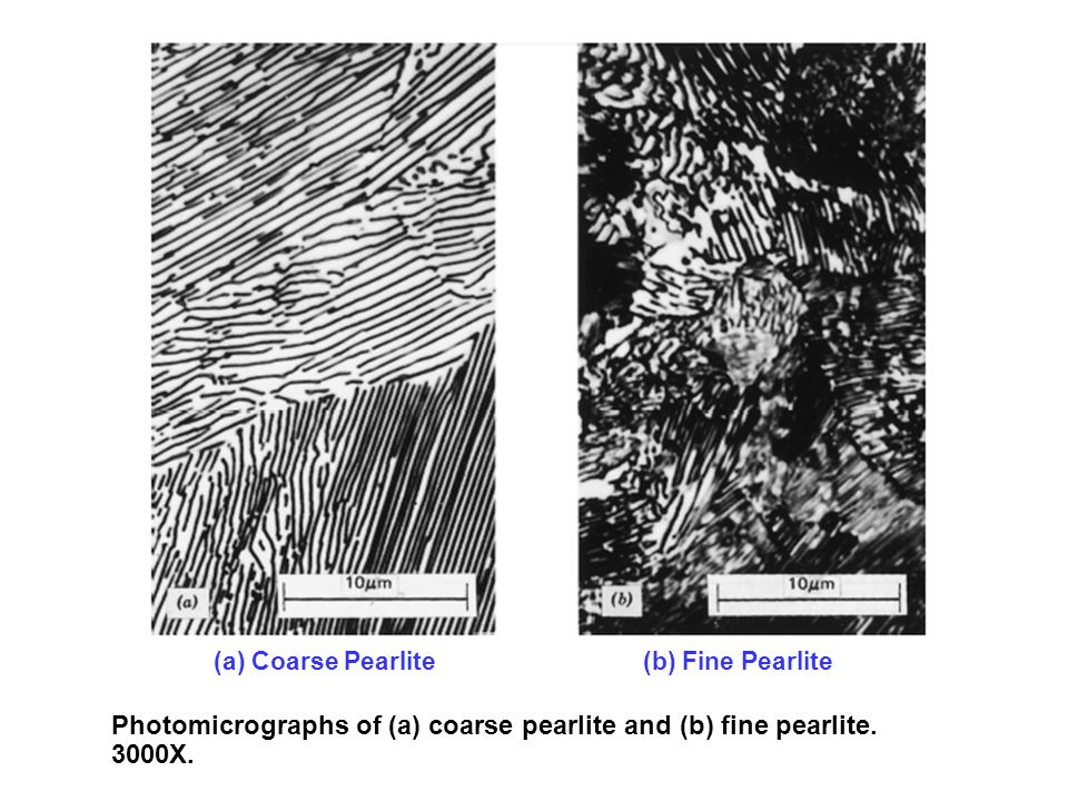 Photomicrographs of (a) coarse pearlite and (b) fine pearlite. 3000X.