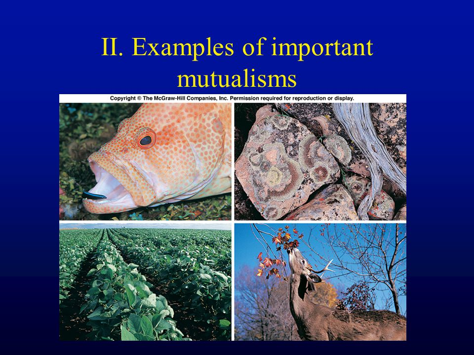 II. Examples of important mutualisms