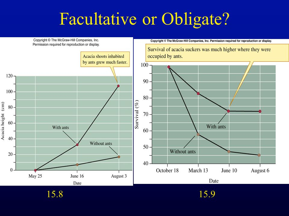 Facultative or Obligate