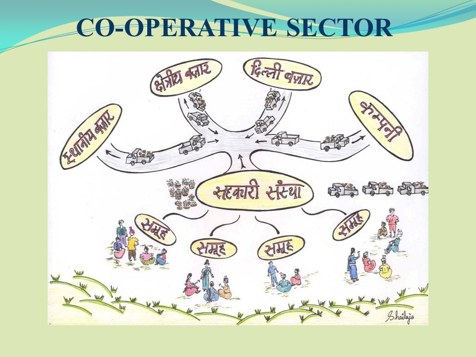 CO-OPERATIVE SECTOR