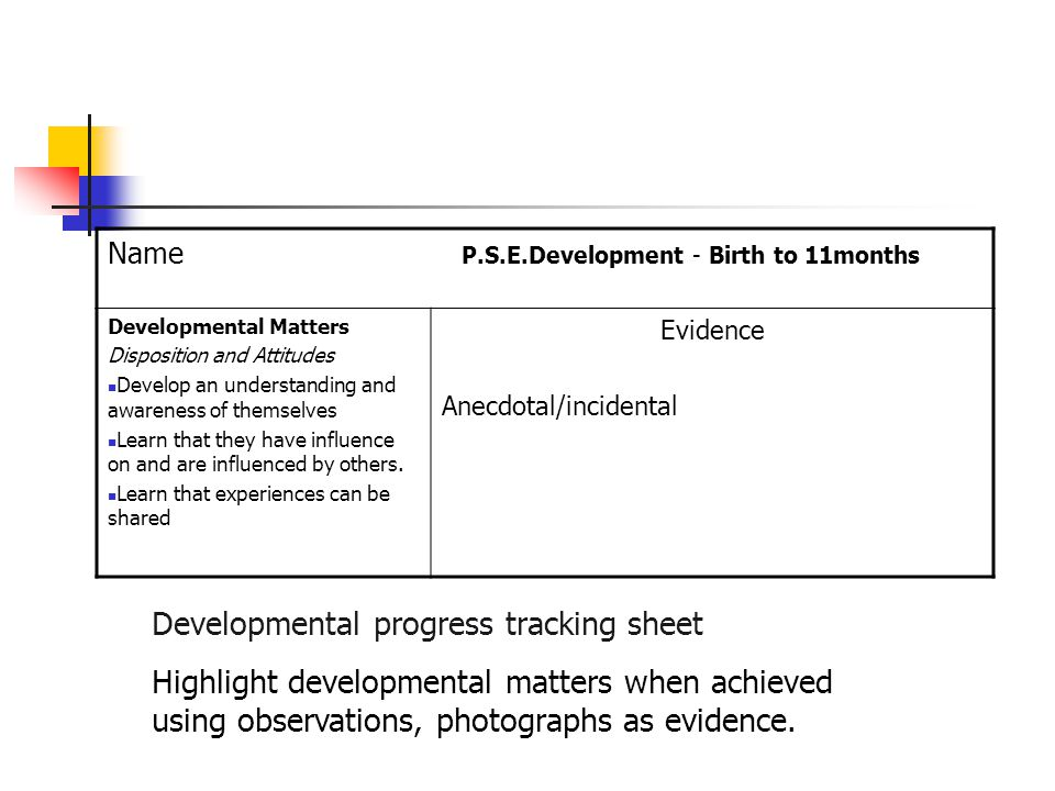 Developmental progress tracking sheet