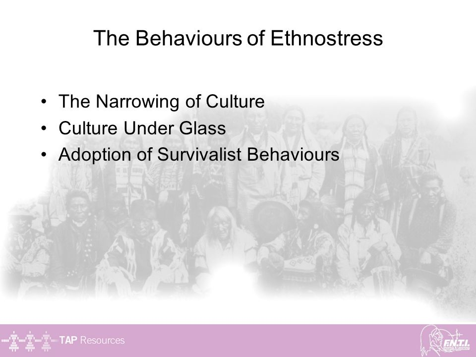 The Behaviours of Ethnostress