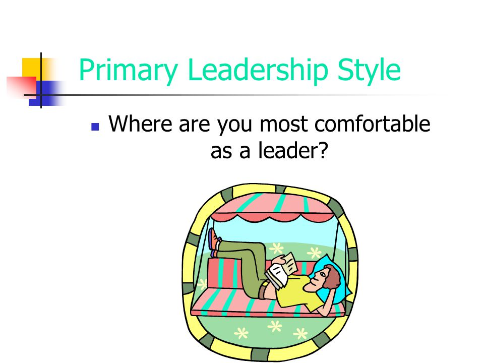 Primary Leadership Style